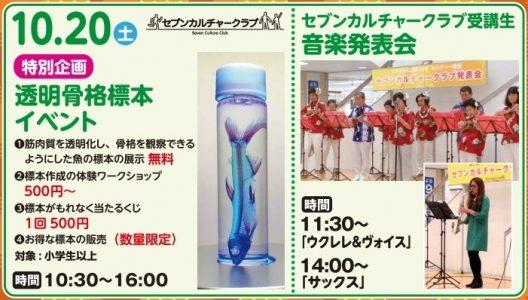 透明骨格標本イベント&音楽発表会